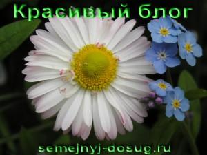 Награда «Красивый блог»