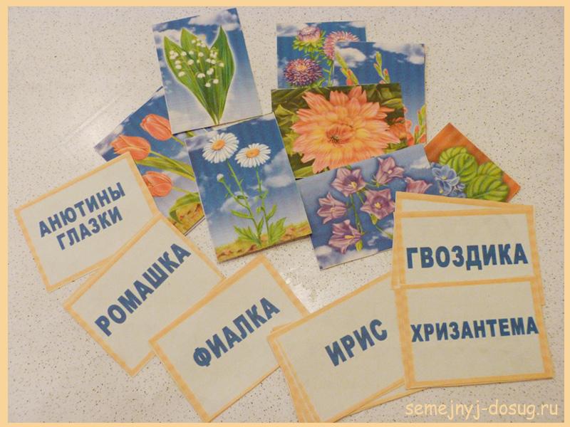 Карточки-задания о цветах