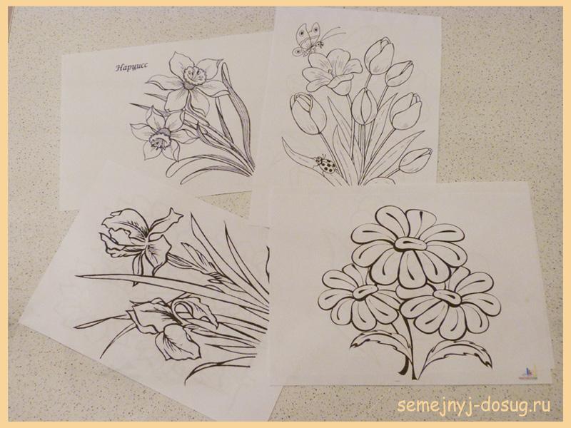 Раскраски -цветы